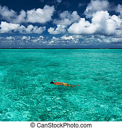 człowiek snorkeling
