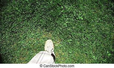 człowiek, trawa, pieszy