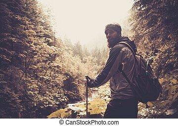 człowiek, z, hiking zaopatrzenie, pieszy, w, góra, las