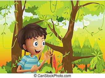 człowiek, zielony, młody, las
