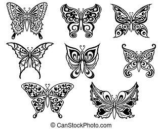 czarnoskóry, motyle, komplet, osiem