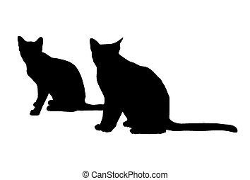 czarnoskóry, sylwetka, koty