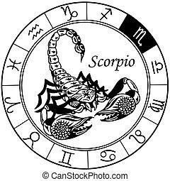 czarny skorpion, zodiak, biały