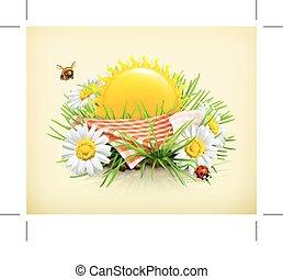 czas, lato, piknik
