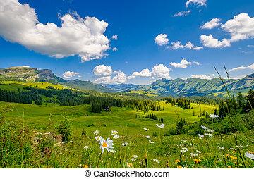 czas, panoramiczny, lato, krajobraz, góra, szwajcaria