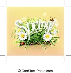 czas, piknik, wiosna