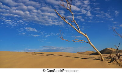 czas, pustynia, szlifierki