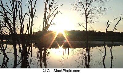 czas-upływ, na, jezioro, wschód słońca, mglisty