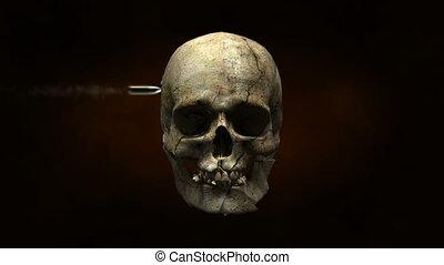 czaszka, obalony, w, kawałki