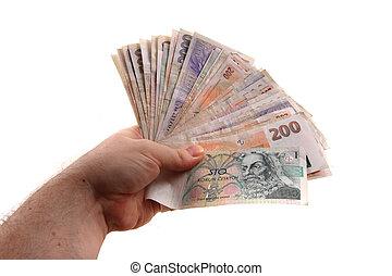 czech money in the human hands