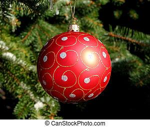 czerwony, gwiazdkowa piłka, na, drzewo jodły