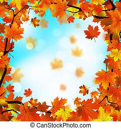 czerwony i żółty, liście, przeciw, błękitny, sky., eps, 8