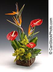 czerwony, ikebana