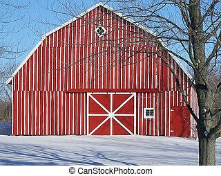 czerwony, pasiasty, stodoła, w, zima