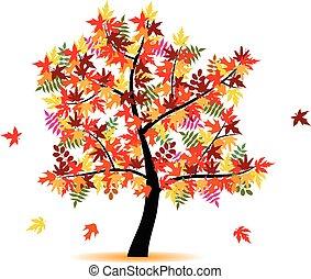 cztery, pora, jesień, -, drzewo