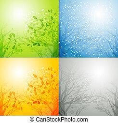 cztery pory, różny, drzewo