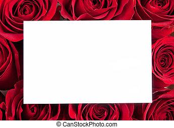 czysty, czerwona karta, róże