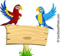 czysty, drewniany, dwa, papugi, drogowskaz, rysunek