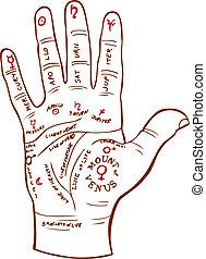 czytanie, dłoń