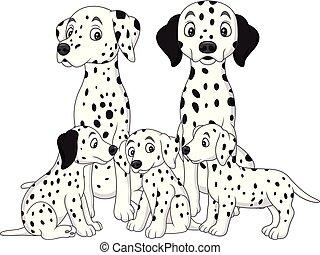 dálmata, perros, familia