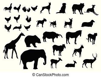 dát, živočichy, silhouettes, temný grafické pozadí, rozmanitý, neposkvrněný, tisk