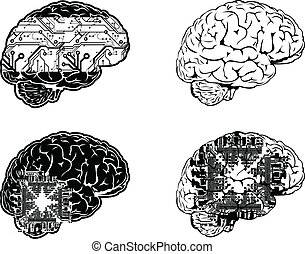dát, barva, jeden, čtyři, mozek, ohledat., elektronický, stěna