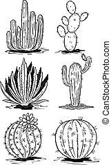 dát, osamocený, grafické pozadí., vektor, osvětlení, neposkvrněný, kaktus