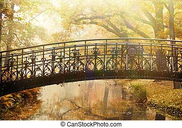 dávný brid, do, podzim, mlhavý, sad