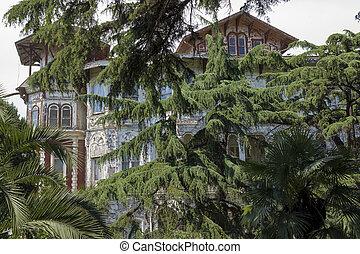 dávný, dějinný, sídlo, do, buyukada, istanbul, -, turecko