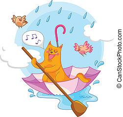 déšť, kočka