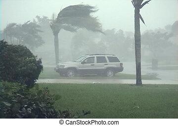 débris, souffler, hurricane: