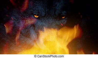 déchaînement, loup, growls, brûler, puissant, alpha