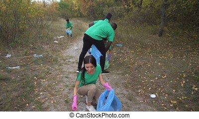 déchets ménagers, activists, multi-ethnique, ramassage, forêt