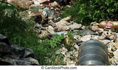 déchets ménagers, déchargé, rivière
