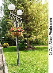 décoratif, été, vertical, parc ville, cadre, jour ensoleillé, arbres, traditionnel, beau, arrière-plan vert, panier, fleurs, lanterne