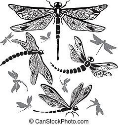 décoratif, ensemble, libellules