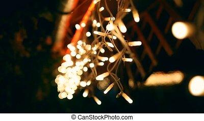 décoratif, extérieur, ficelle, pendre, lumières arbre, temps, nuit, jardin