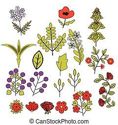 décoratif, fleurs, ensemble
