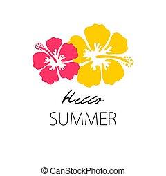 décoratif, hibiscus, feuilles, ornement, illustration, paume, frontière, print.