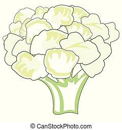 décoratif, isolé, chou-fleur, fond, blanc, dessin