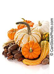 décoratif, potirons, copyspace, automne