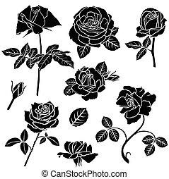 décoratif, rose, ensemble