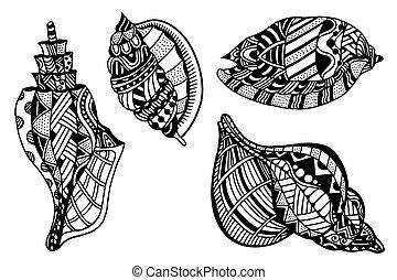 décoratif, seashells, ensemble