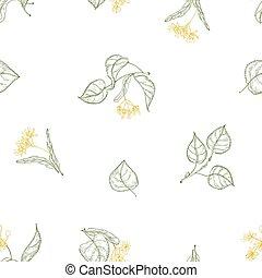 décoratif, tilleul, wallpaper., naturel, papier, modèle, feuilles, arbre, seamless, illustration, lignes, arrière-plan., vecteur, emballage, foliage., fleurir, dessiné, fleurs blanches, contour, toile de fond