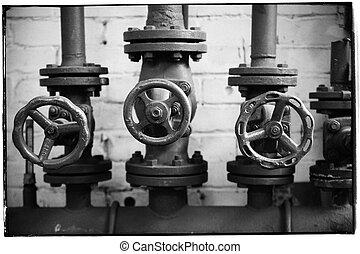 décoratif, trois, valves