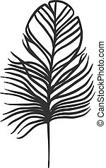 décoratif, vector., noir, plume