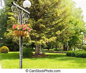 décoratif, ville, été, ensoleillé, parc, arbres, traditionnel, beau, arrière-plan vert, panier, fleurs, jour, lanterne