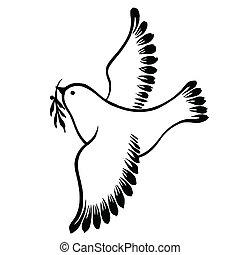 décoratif, voler, paix, silhouette, colombe