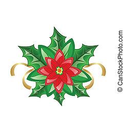décoration, fleur, noël, poinsettia