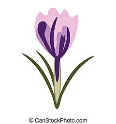 décoration, fleur source, naturel